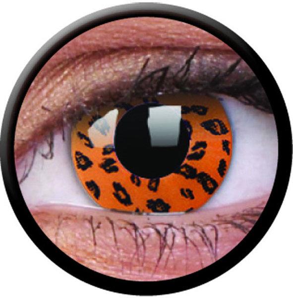 ColourVue CRAZY ČOČKY - Yellow Leopard (2 ks tříměsíční) - nedioptrické