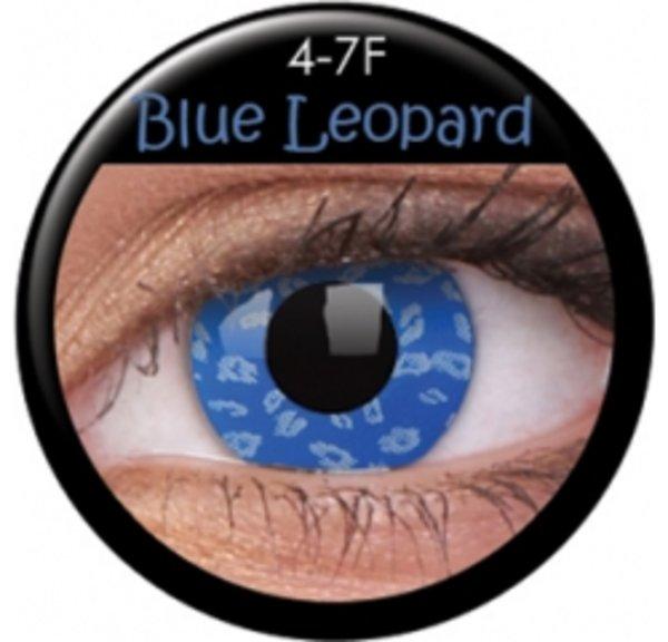 CRAZY ČOČKY )2ks, tříměsíční) - Blue Leopard - exp.11/2016