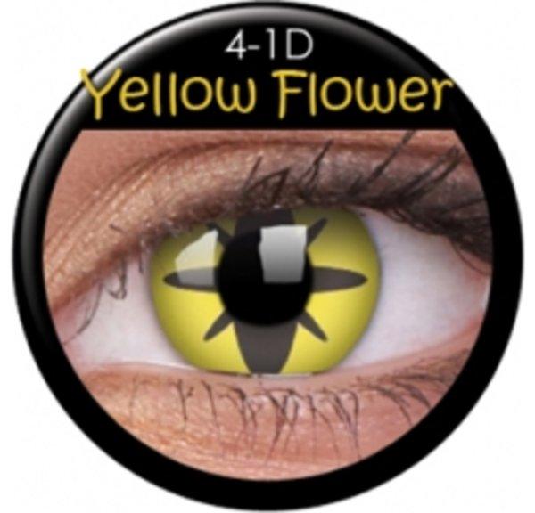 CRAZY ČOČKY  (2ks, tříměsíční) - Yellow Flower
