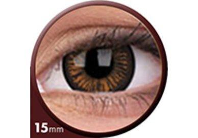 Phantasee Big Eyes - Charming Brown (2 čočky tříměsíční) - dioptrické - doprodej