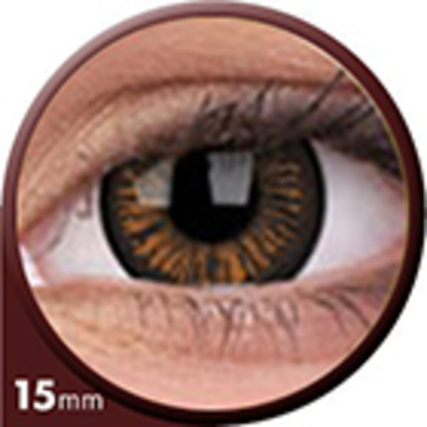Phantasee Big Eyes - Charming Brown (2 čočky tříměsíční) - dioptrické -1,00 exp. 07/21